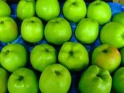 Яблоки из Польши!!!!!
