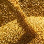 Кукуруза фуражная 600 тонн